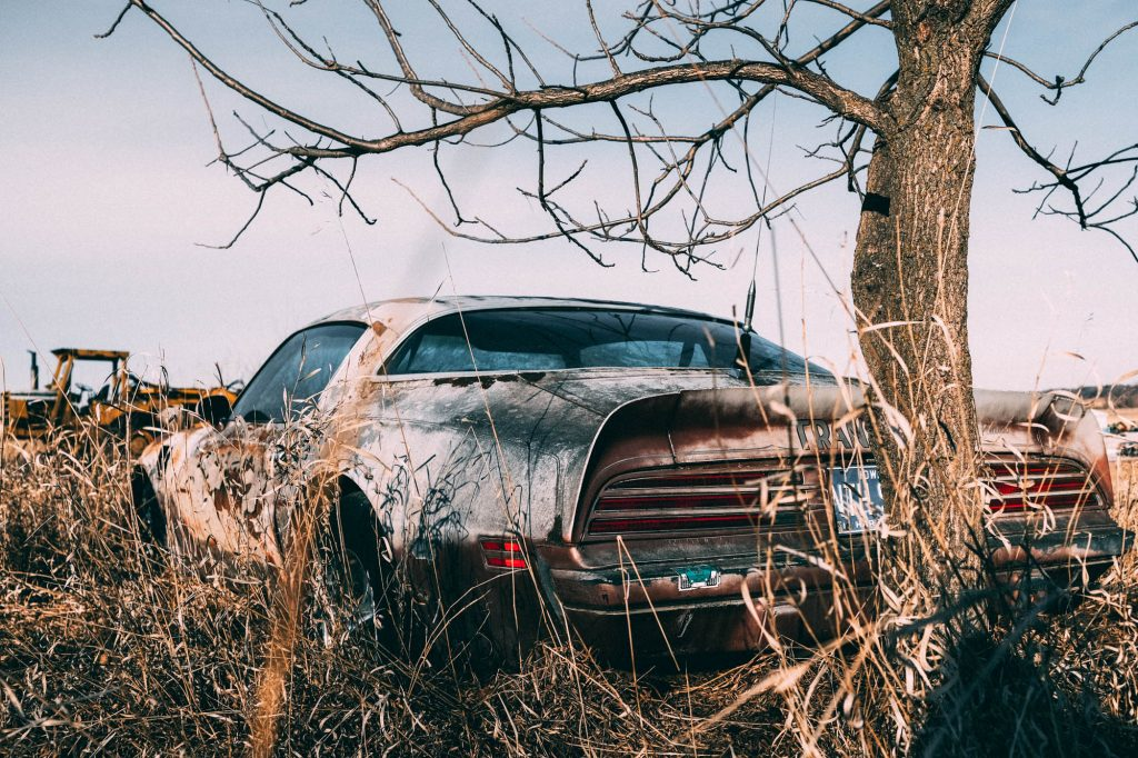 The rear of an old Trans Am abandoned in a field.